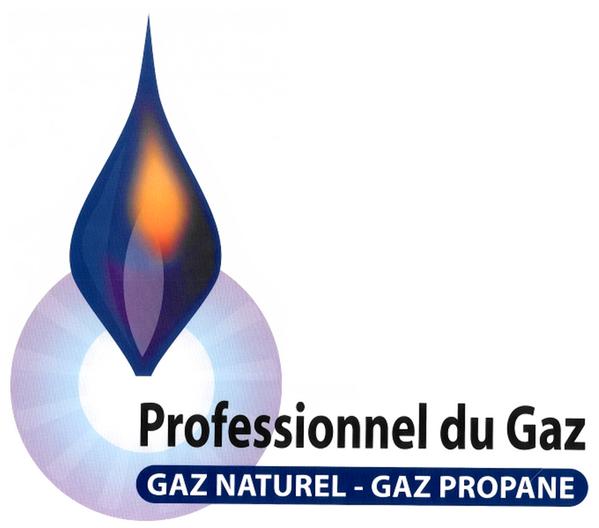 PGN PGP Patrick Villoin
